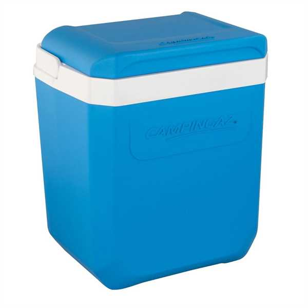 Kühlbox Icetime Plus 26 Liter